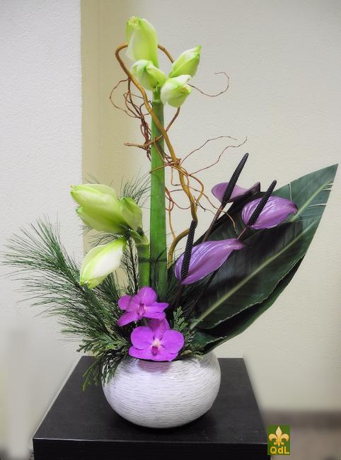 Amaryllis , Anthurium , Fleuron de Vanda Branche de Saule