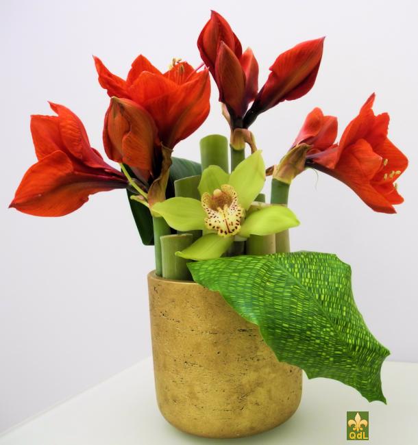Amaryllis , Fleuron de Cymbidium feuille de calathéa