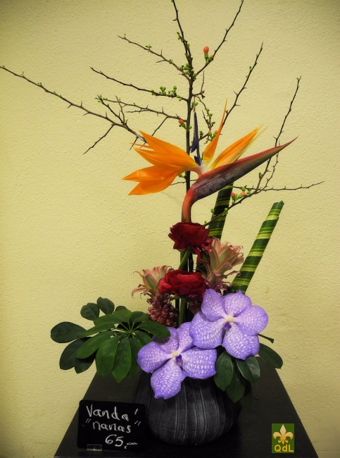 Strélizia , Renoncule ,Ananas , Fleuron de Vanda