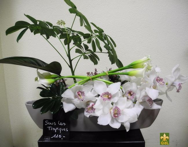 Branche de Cymbidium , Calla , Verdure