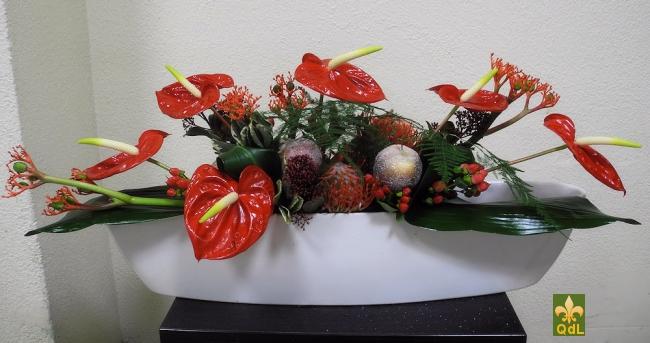 Anthurium , Protéa Nutans , Pommes Givré Hypericum , Jatropha