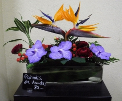 Strélizia , fleuron de Vanda ,Renoncule , Hypéricum