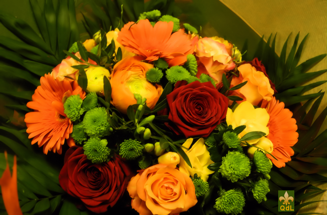 Rose , Renoncule , Freesia , Germini Santini