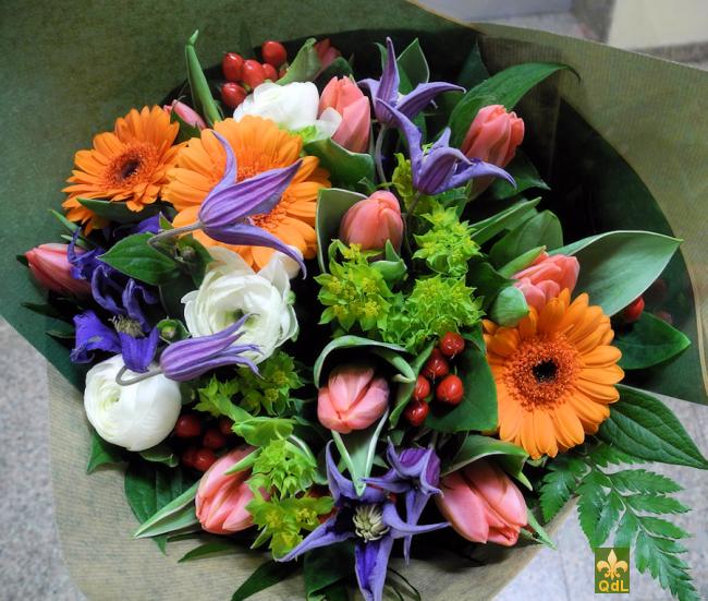 Tulipe , Germini , Reconcule , Hypericum , Clématite