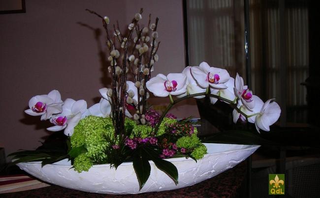 Branche de Phalaenopsis Châton , Viburnum Boule de Neige , Fleurs de Cire