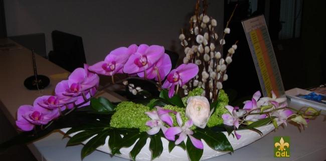 Branche de Phalaenopsis Châton , Dendrobium , Viburnum Boule de Neige