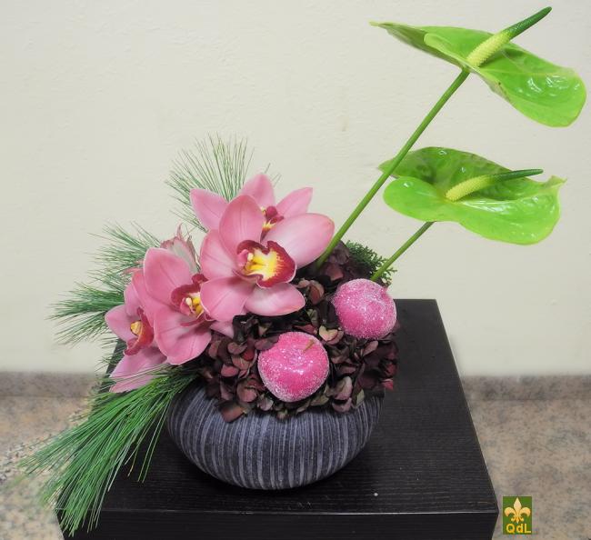 Anthurium Fleuron de Cymbidium Pomme Givré, Hortensia