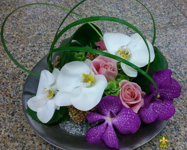 Fleuron de Phalaenopsis et de Vanda , Rose et Verdure